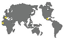 world mediterranea services